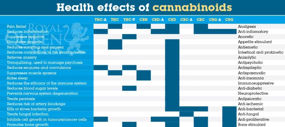 effetti cannabinoidi