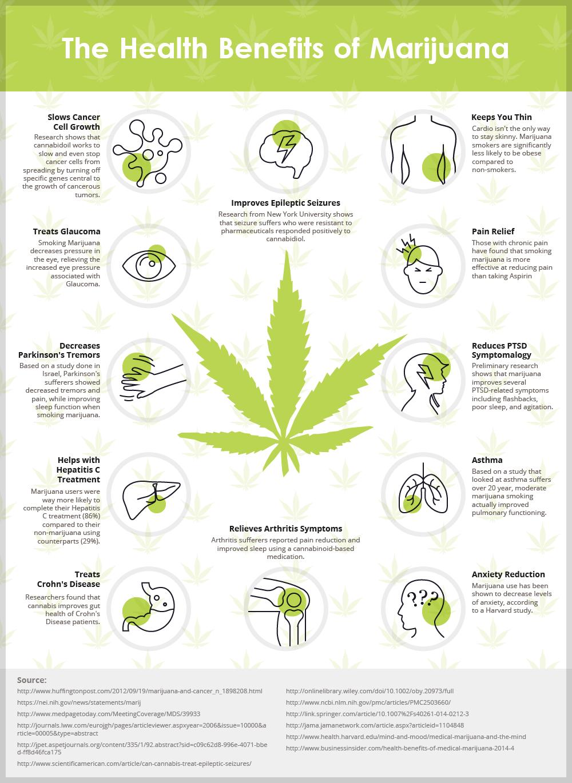 infografica: benefici della cannabis per la salute