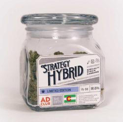 Strategy Hybrid