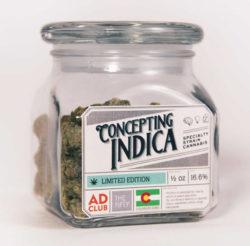 Concepting Indica